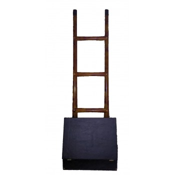 Appearance of the Ladder
